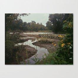 Aquatic Meloncholy Canvas Print