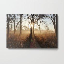 Warm Sunrise in Autumn Metal Print