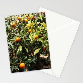 Italian Oranges Stationery Cards