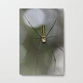 Spidey Metal Print