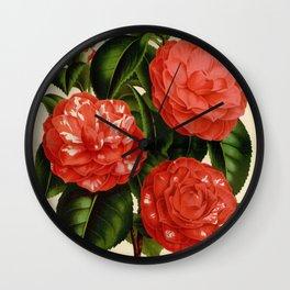 Flower camellia roi des belges19 Wall Clock