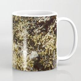 Pacific Ocean Coral Coffee Mug