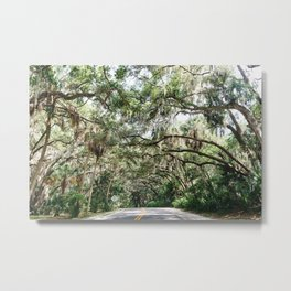 The Canopy Metal Print