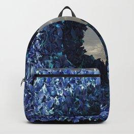 Hedge 02 Backpack