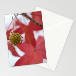 Sweet Red Stationery Cards