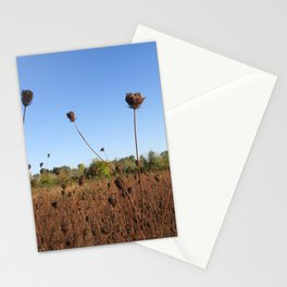 Early Fall Field Stationery Cards