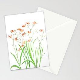 blackberry lily Stationery Cards