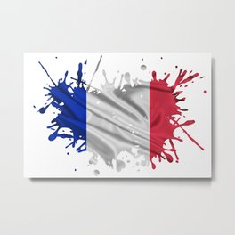 The French Flag Metal Print