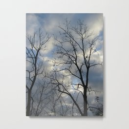View of the sky Metal Print