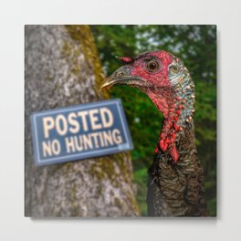 Smart Bird Metal Print