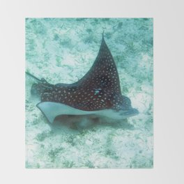 Watercolor Ray, Spotted Eagle Ray 36, St John, USVI Throw Blanket