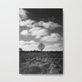 Lonely tree Dutch Nature Reserve de Veluwe - Art work Print Photography Metal Print