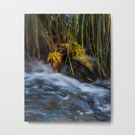 Fallen Leaves by the Creek Metal Print