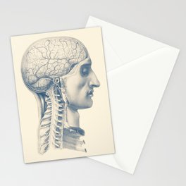 Brain and Spinal Anatomy - Side View  - Vintage Anatomy Stationery Cards