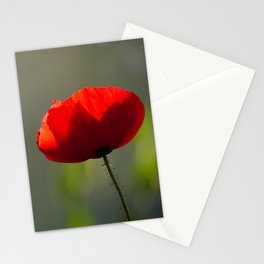 Red Poppy | Symbol of Remembrance day | Nature Photography Stationery Cards