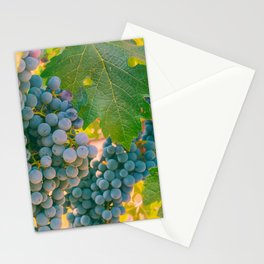 Grapevines 3 Stationery Cards