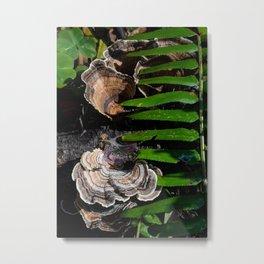 Shy mushrooms Metal Print