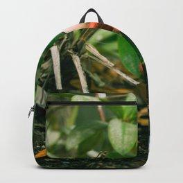Garden Gnome Backpack