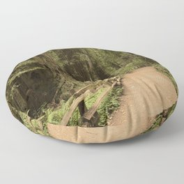 muir woods Floor Pillow