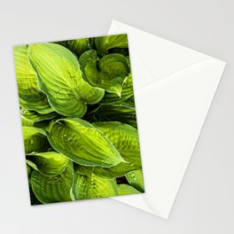 green flow Stationery Cards
