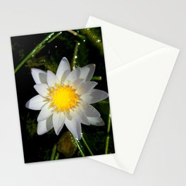 Purity in the Mud Stationery Cards