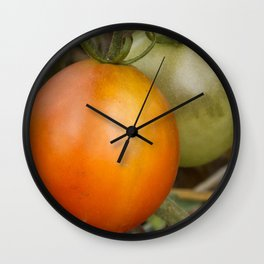 Close up of Cherry tomatoes ripening on the vine Wall Clock