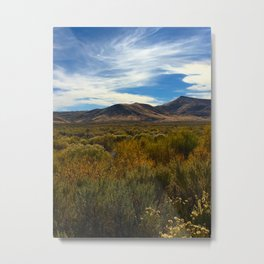High Desert 2 Metal Print