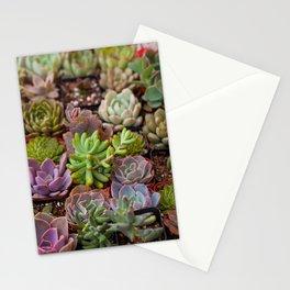 Miniature Succulent Garden Stationery Cards