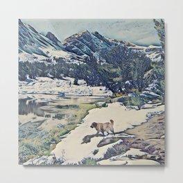 Mountain Lake Trail Metal Print