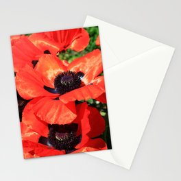 mohn Stationery Cards