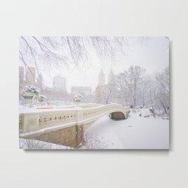 Central Park New York City Snow Day Metal Print