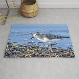 Watercolor Bird, Least Sandpiper 04, Janes Island, Maryland Rug