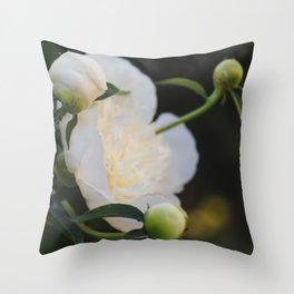 Portrait of a Peony at Dawn - Floral Photography Throw Pillow