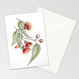 Flowering Australian Gum Stationery Cards
