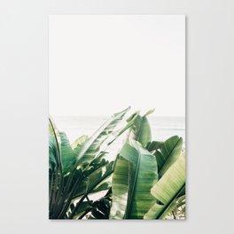 Pretty Palms Canvas Print