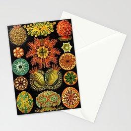 Ernst Haeckel Kunstformen der Natur Ascidian (Ascidiae) Stationery Cards