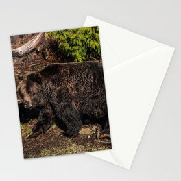 fluffy wanderer Stationery Cards