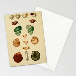 Vintage Print - Universal Dictionary of Natural History (1849) - Molluscs 8 Stationery Cards