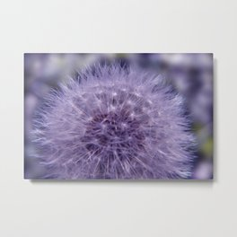 the beauty of a summerday -4- Metal Print
