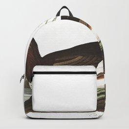 Eared grebe, Birds of America, Audubon Plate 404 Backpack