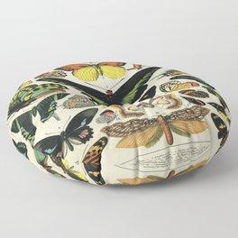Adolphe Millot Butterfly Vintage Scientific Illustration Old Le Larousse pour tous llustration Floor Pillow