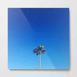 Palm Sky photography Metal Print