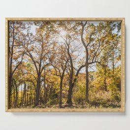 A Walk in the Woods - Autumn Nature Photography Serving Tray