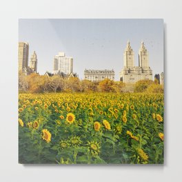 Central Park Sunflower Field Collage Metal Print