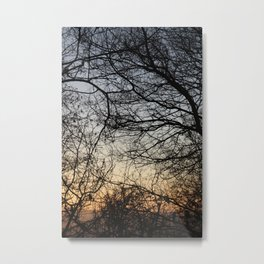 Sunset Branches 2 Metal Print