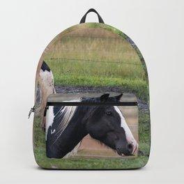 Gypsy Vanner Horses 0096 - Colorado Backpack