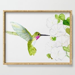 Hummingbird with moonflowers  Serving Tray