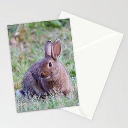 Bunny Rabbit2 Stationery Cards