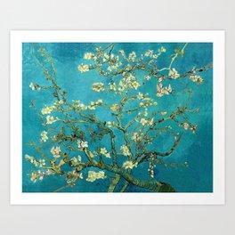 Vincent Van Gogh Blossoming Almond Tree Kunstdrucke