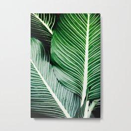 Palm-Tree Breeze Metal Print